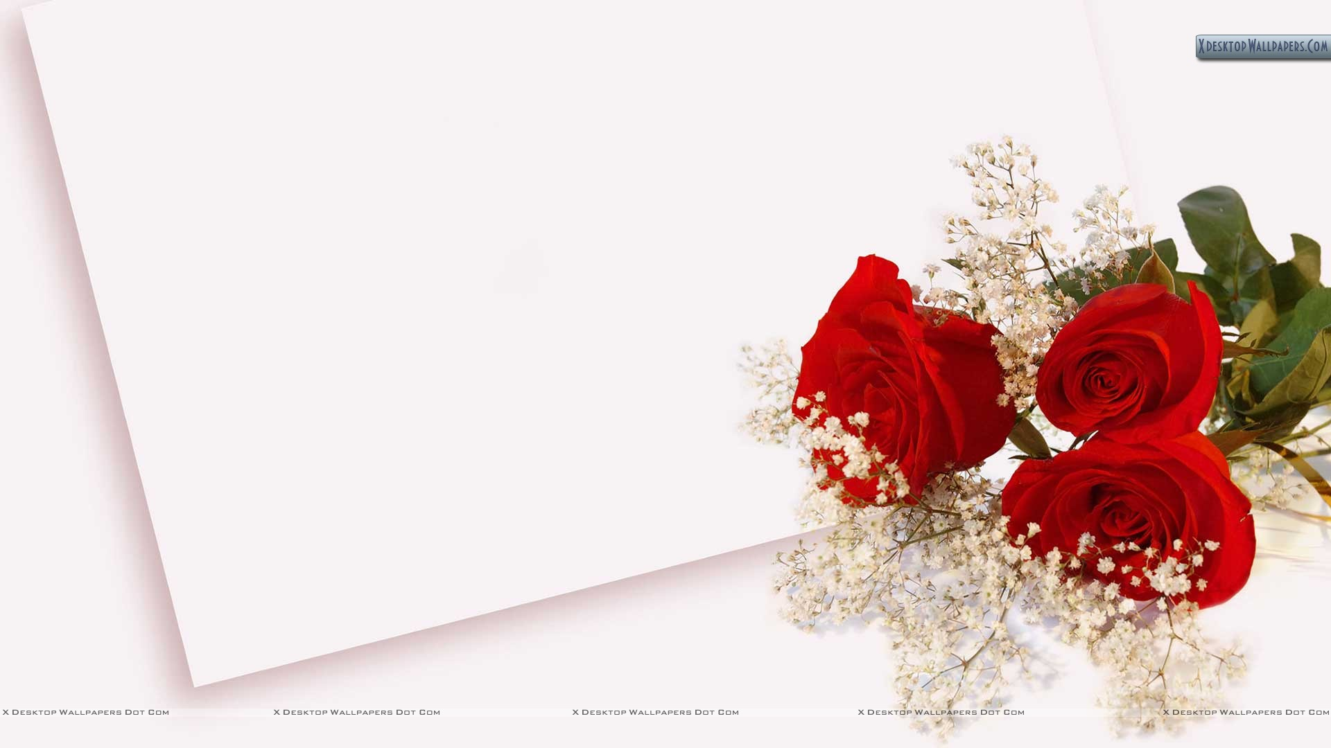 envelope wedding background flowers wallpaper wallpaper white 1920x1080