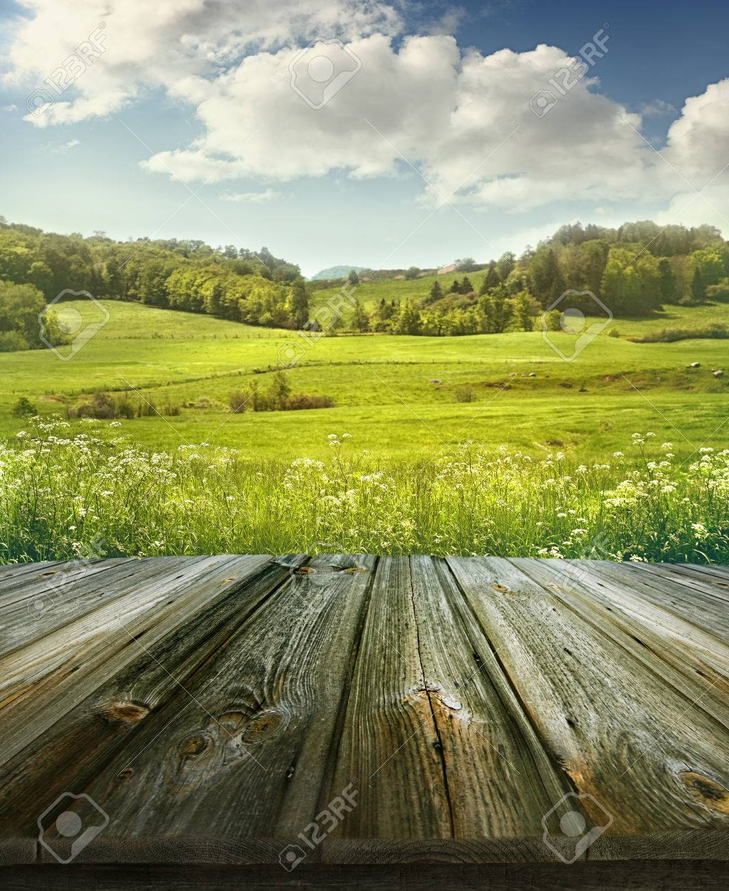 Summer Pastoral Background With Rough Wooden Planks Stock Photo 1064x1300
