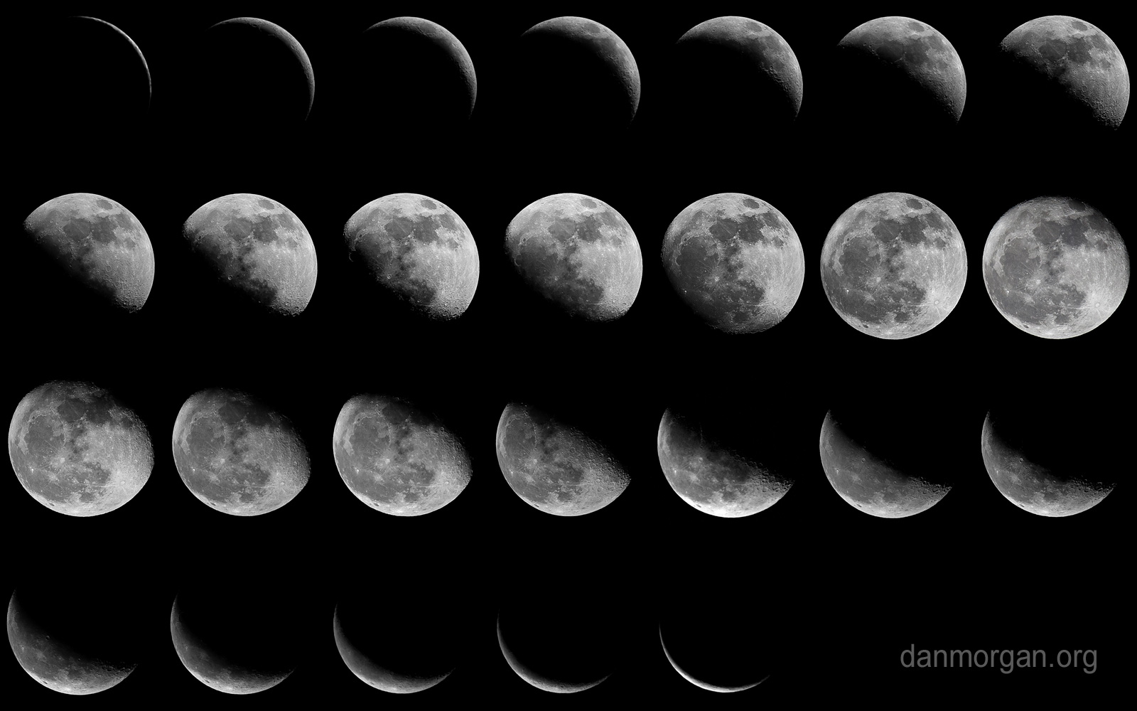 Phases Of The Moon Wallpaper Wallpapersafari
