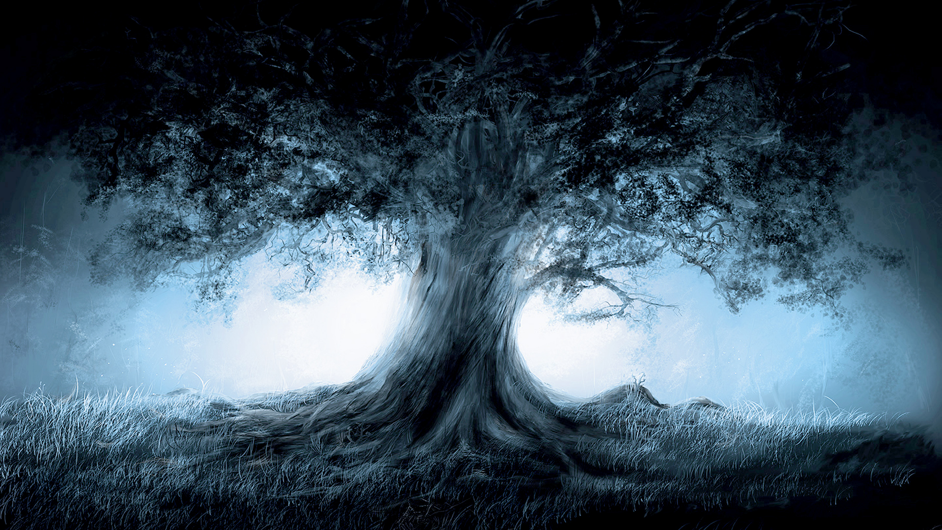 Trees Magic Wallpaper 1920x1080 Trees Magic 1920x1080