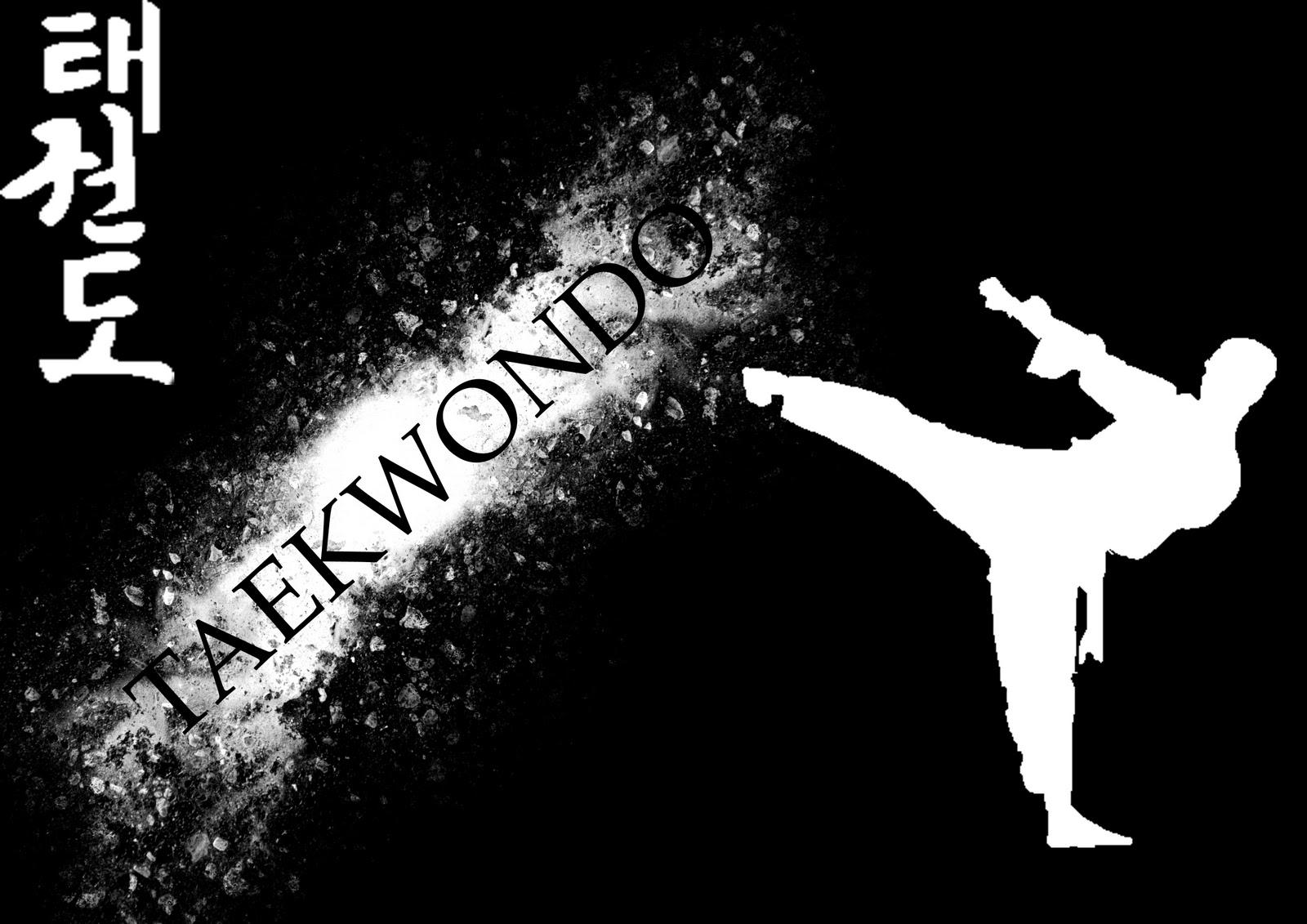 Pin Taekwondo wallpaper 1600x1131