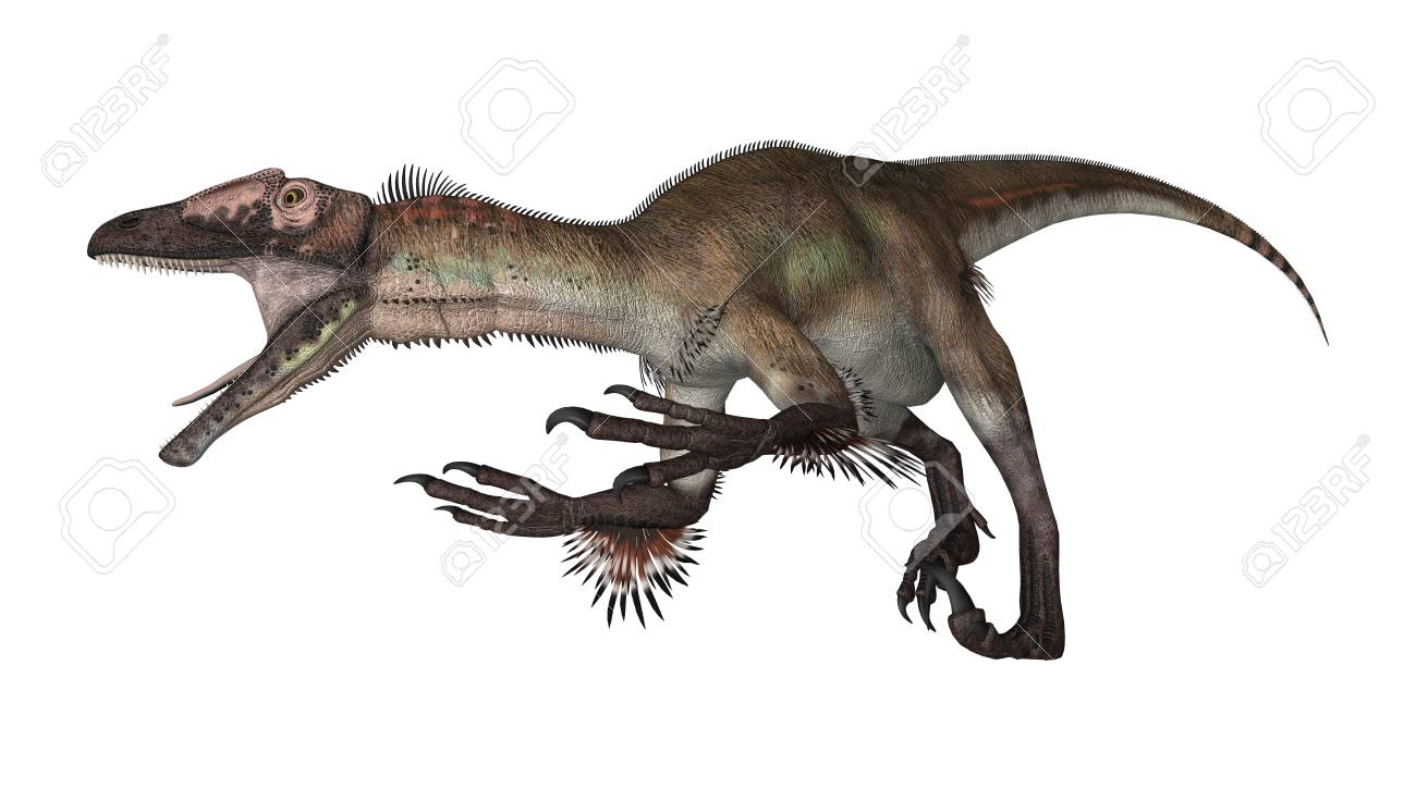 3D Rendering Of A Dinosaur Utahraptor Isolated On White Background 1300x735