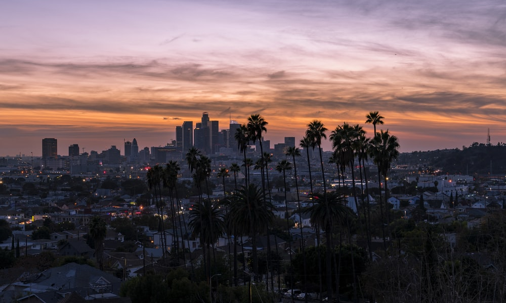 100 Beautiful Los Angeles Pictures Download Images on Unsplash 1000x600
