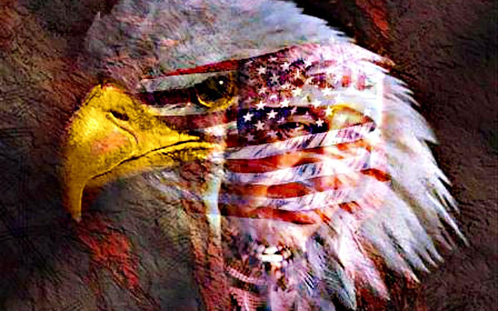 AMERICAN EAGLE WALLPAPER   99128   HD Wallpapers   [desktopinHQnet 1920x1200