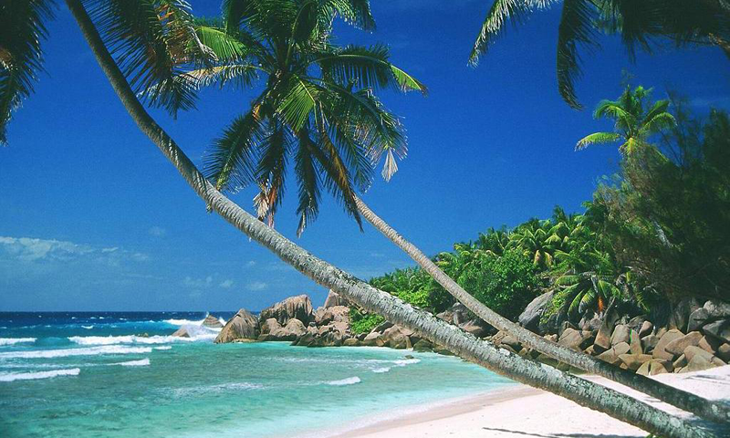 Jamaica Beaches Wallpapers   screenshot 800x480