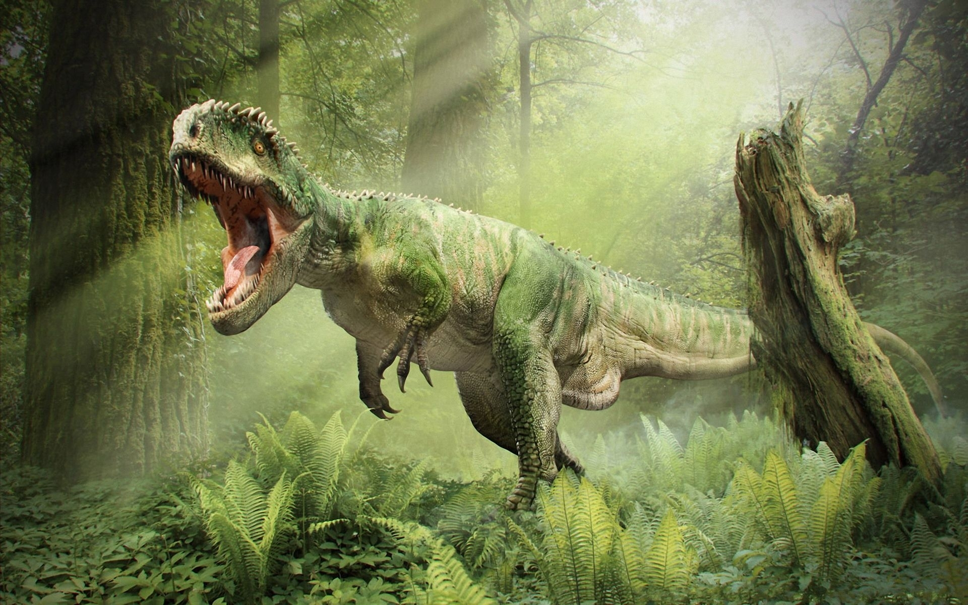 dinosaur t rex roar fall forest wallpapers photos pictures 1920x1200