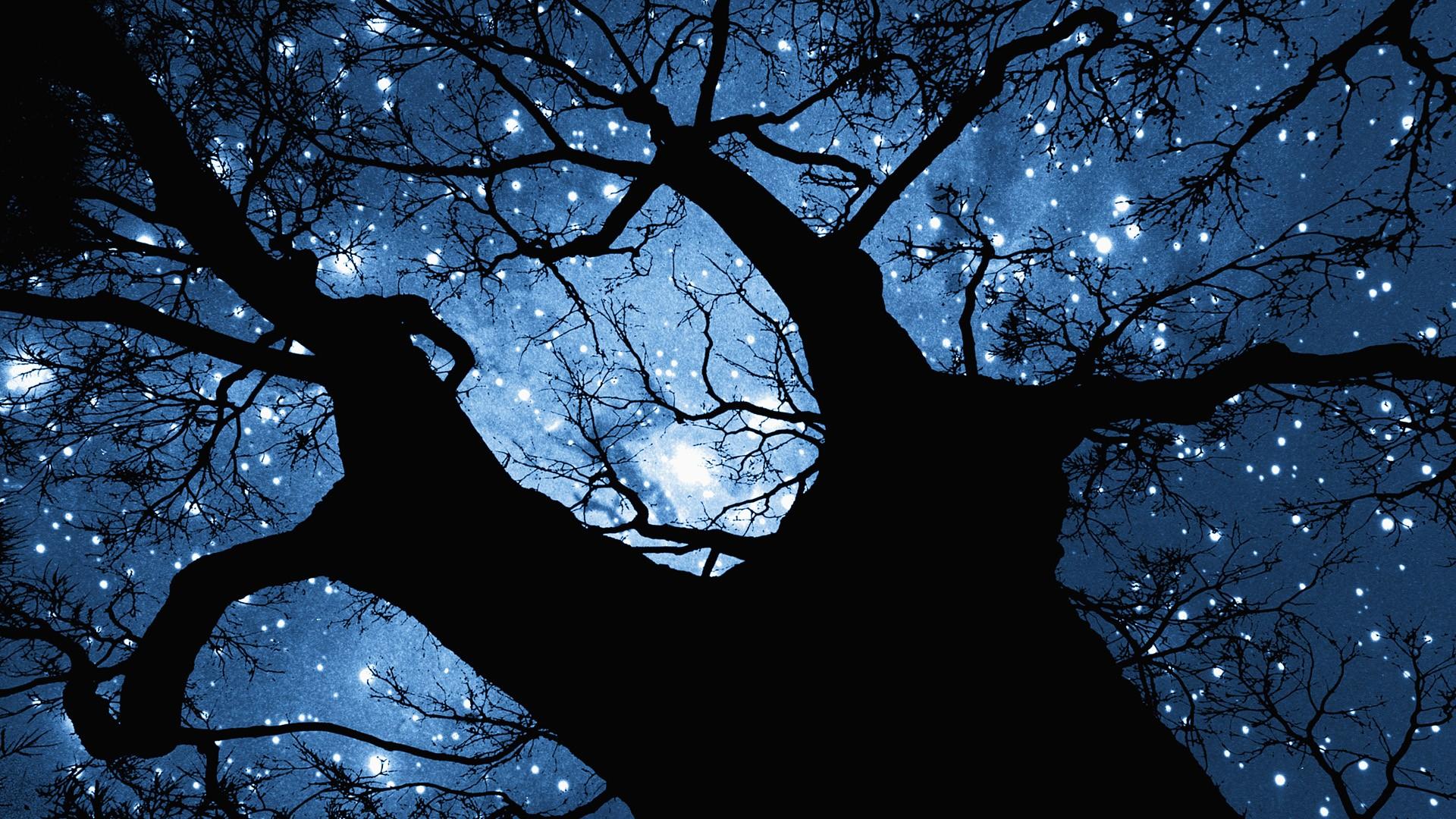 Stars Wallpaper, wallpaper, Stars Wallpaper hd wallpaper, background ...