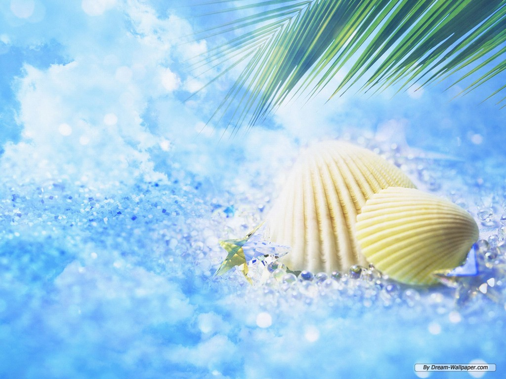 Free Summer Wallpaper Backgrounds 1024x768 Wallpapersafari