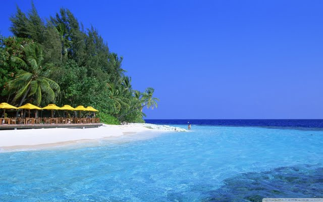 Tropical Resort Island Wallpaper 640x400