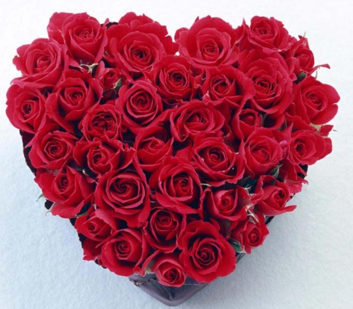St Valentines Screensavers multimedia gallery 700x613