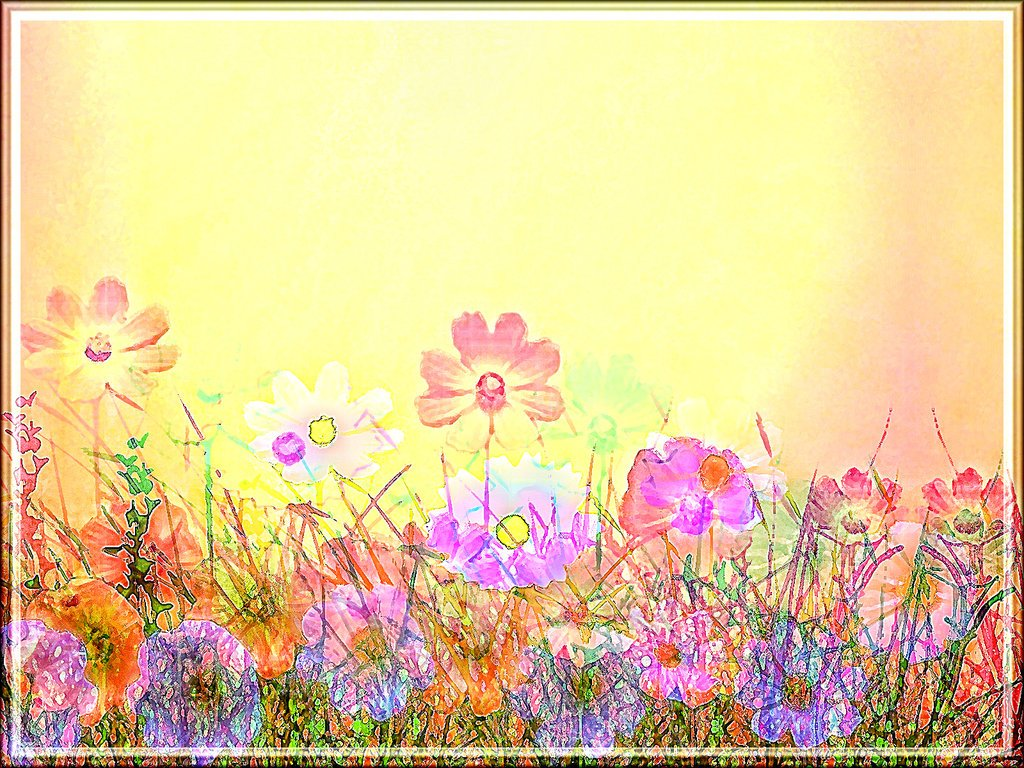 field of spring flowers wallpaper wallpapersafari free printable springtime clipart free springtime clipart images