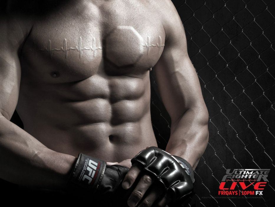 UFC mma fighting martial arts wrestling boxing wallpaper 933x700