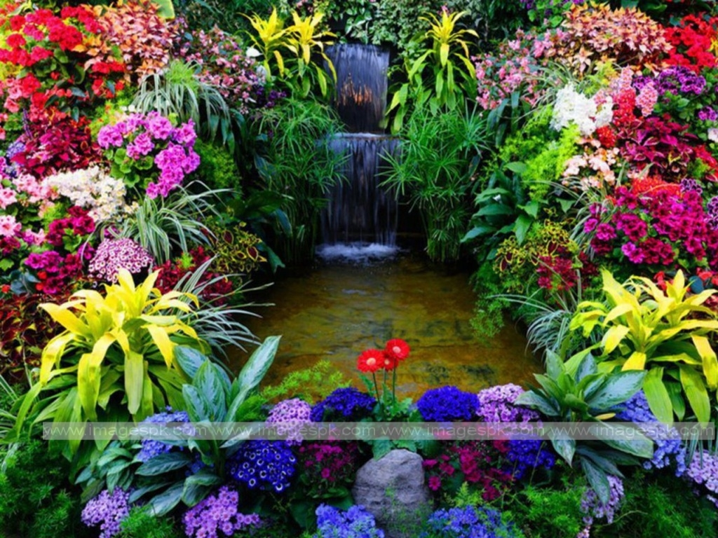 Beautiful flower garden wallpapers wallpapersafari for Beautiful garden images hd