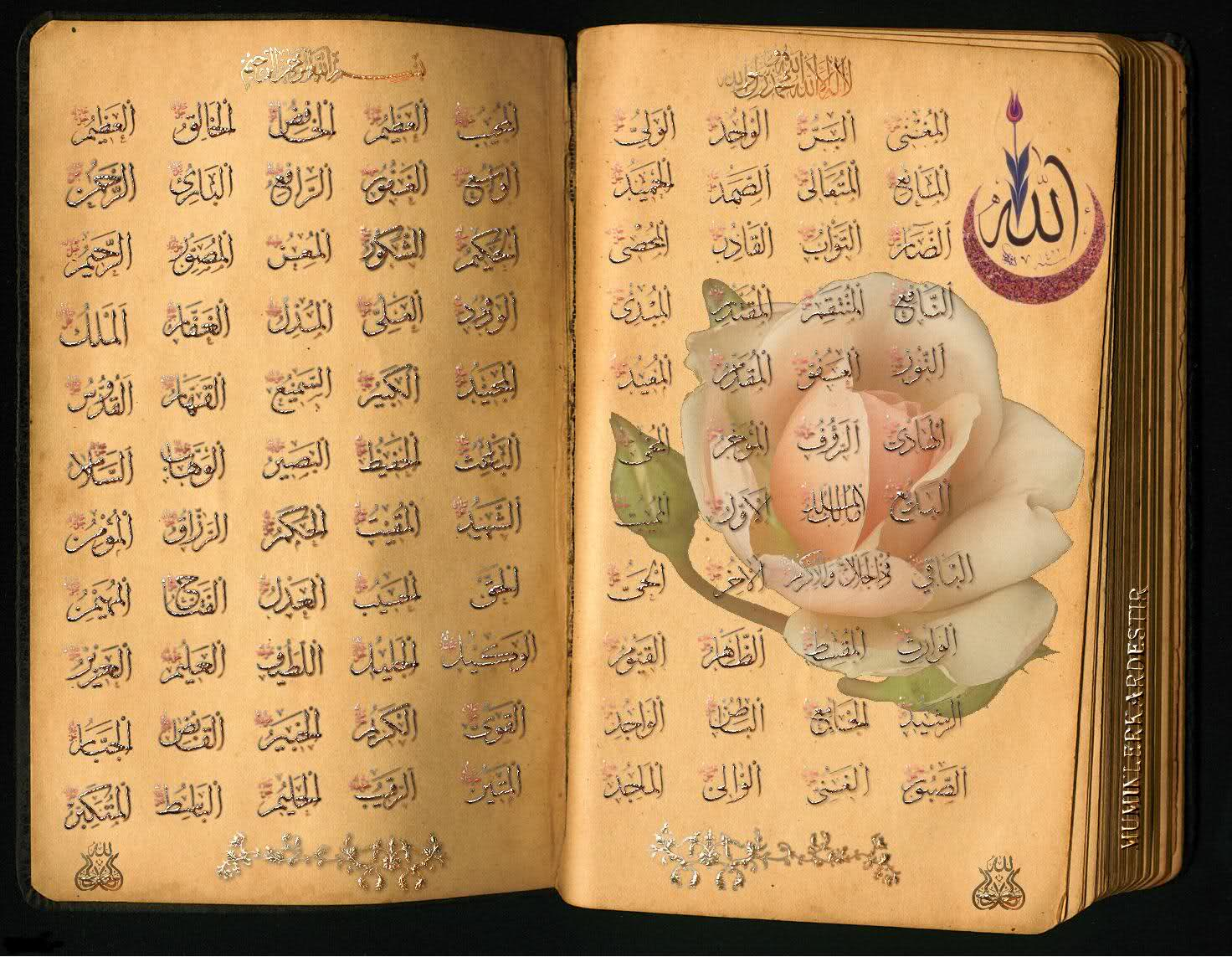 99 names of allah 99namesofallahorg is only to provide all the information about 99 names of allah and names of muhammad pbuh, we are also providing all hadith books in pdf and at the same time all tafseer books in many languages.