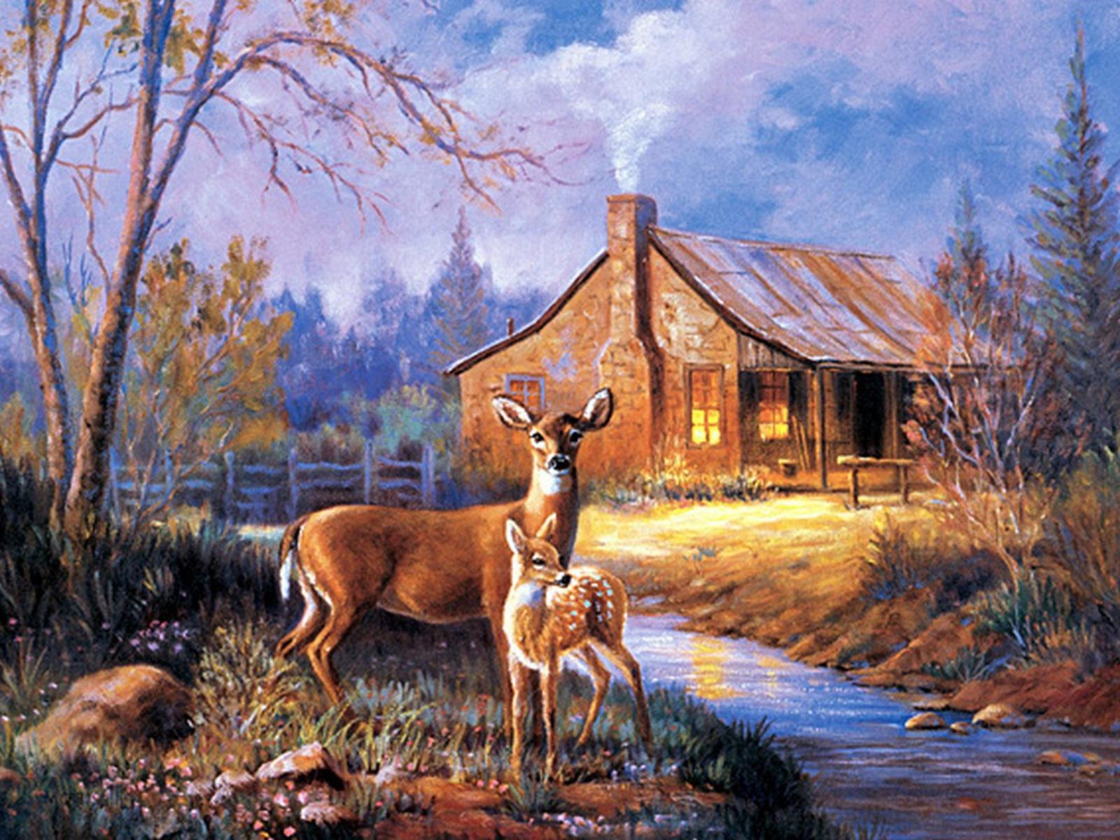 Wallpapersafari: Whitetail Deer Screensavers And Wallpaper