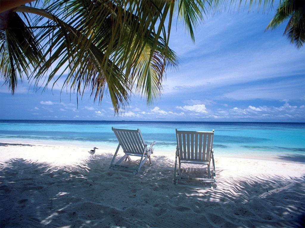 Beach Landscapes Summer Desktop Wallpaper Hd Wallpaper 1024x768