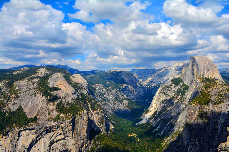 Yosemite Wallpaper OS Yosemite 5k wallpapers forest OSX apple 6000x4000