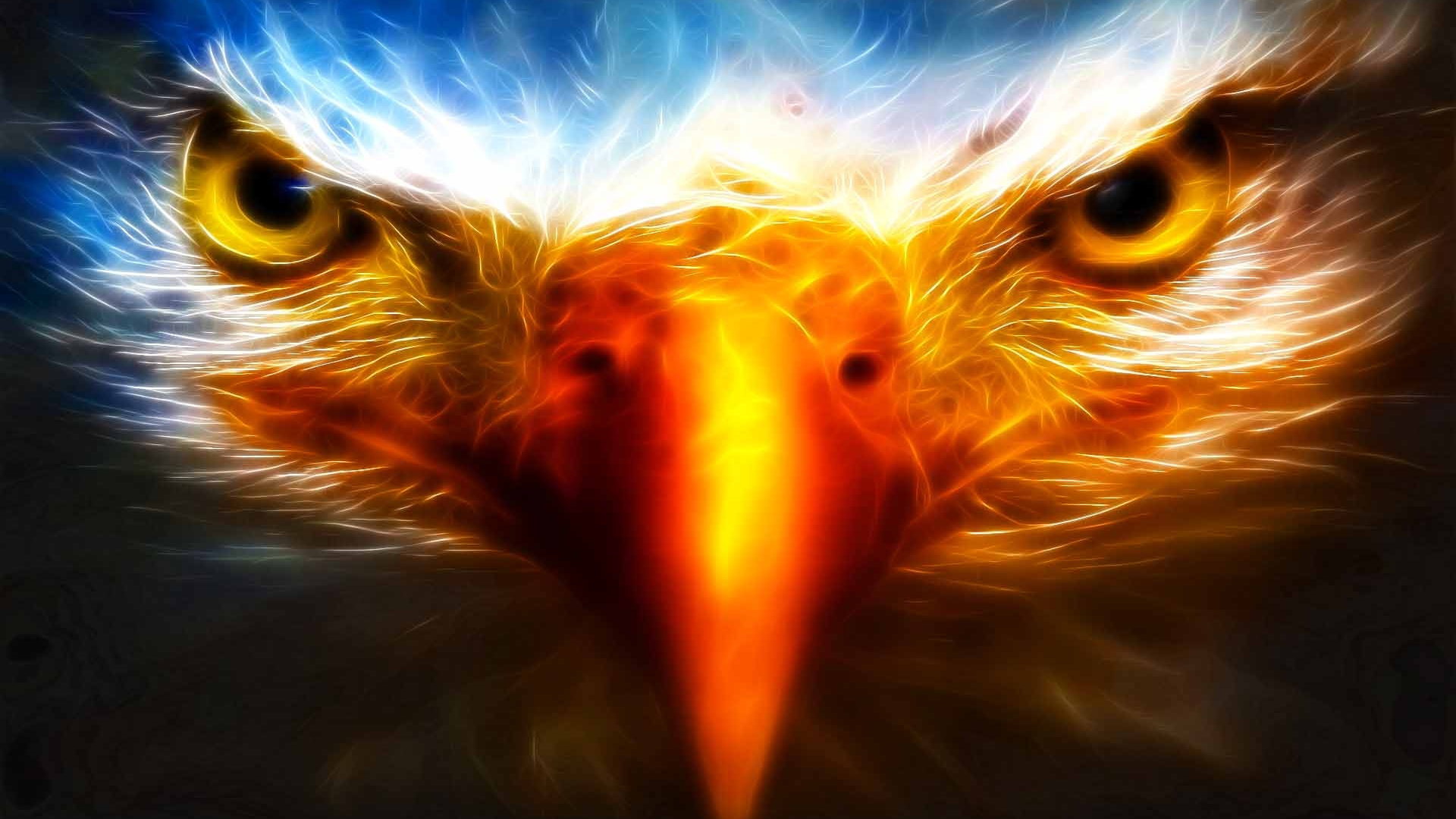 eagle 3d cool hd wallpapers desktop background 1920x1080