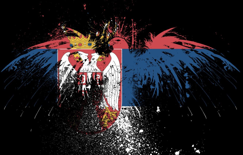 Wallpaper eagle flag brothers Serbia Serbia serbian flag 1332x850