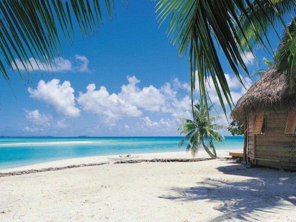 12330 Summer Beach HD Background Wallpaper   WalOpscom 1024x768
