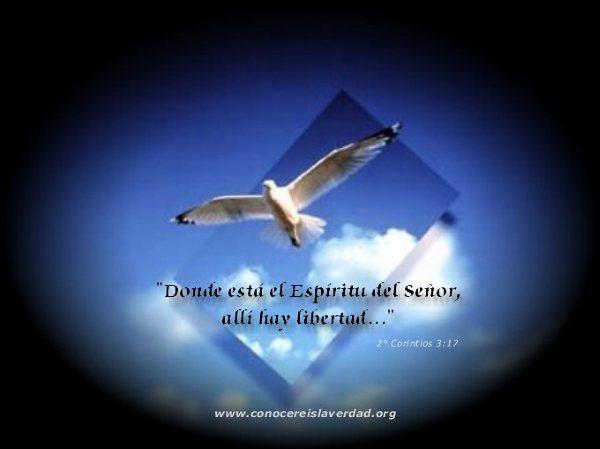 Wallpaper cristianos evangelicos gratis   Imagui 600x449