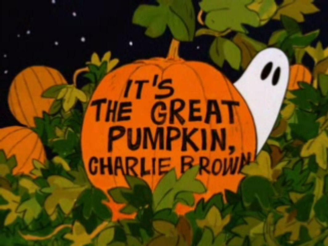 Free Download Great Pumpkin Charlie Brown Wallpapers 1064x800