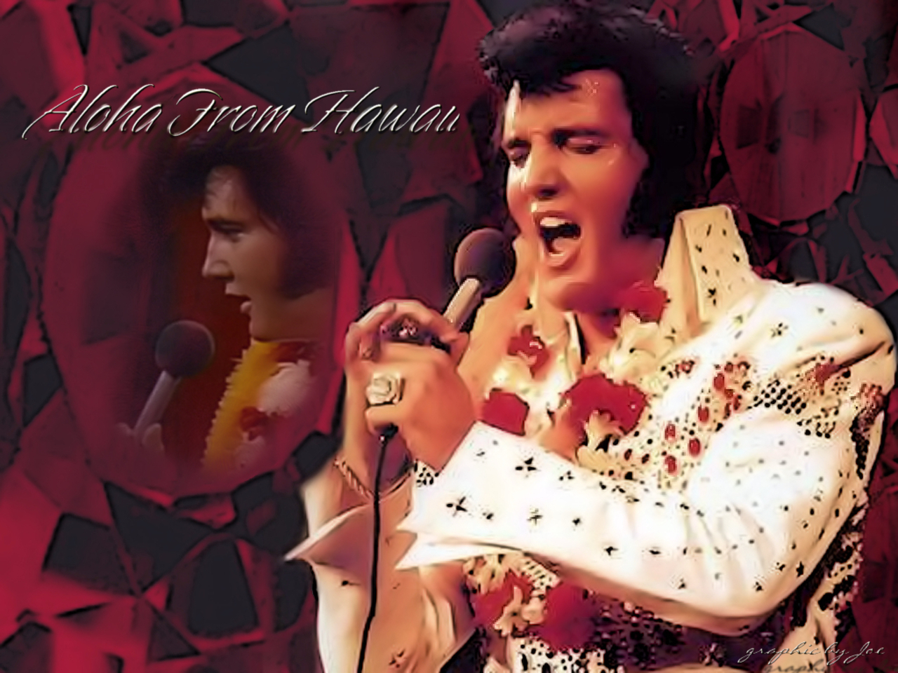 Free Download Elvis Presley Wallpaper Elvis Presley Wallpapers