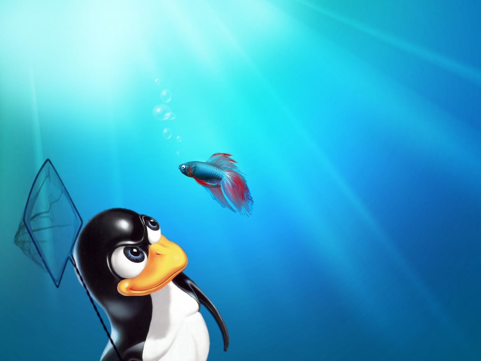 Tux vs Windows 7 Fish Desktop and mobile wallpaper Wallippo 1600x1200