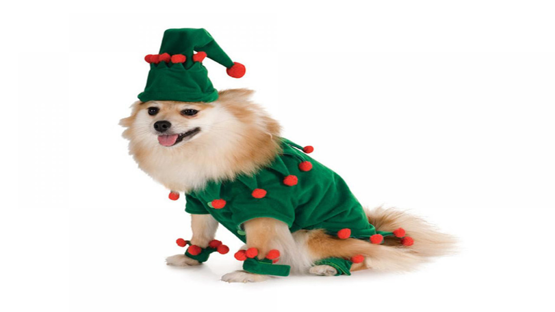 Christmas Puppy Dog HD Wallpapers for iPhone 5 1136x640