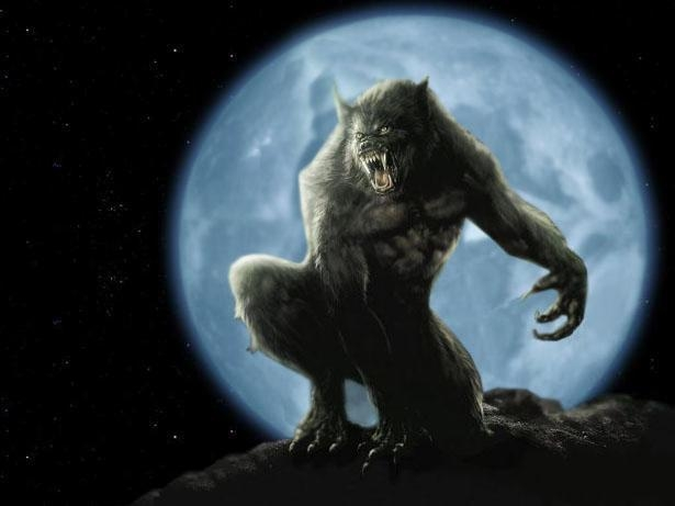 Underworld Werewolf Wallpaper Werewolf by juanmadraco HTML code