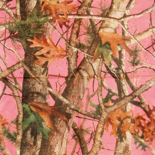 Pink Hunting Camo Wallpaper - WallpaperSafari