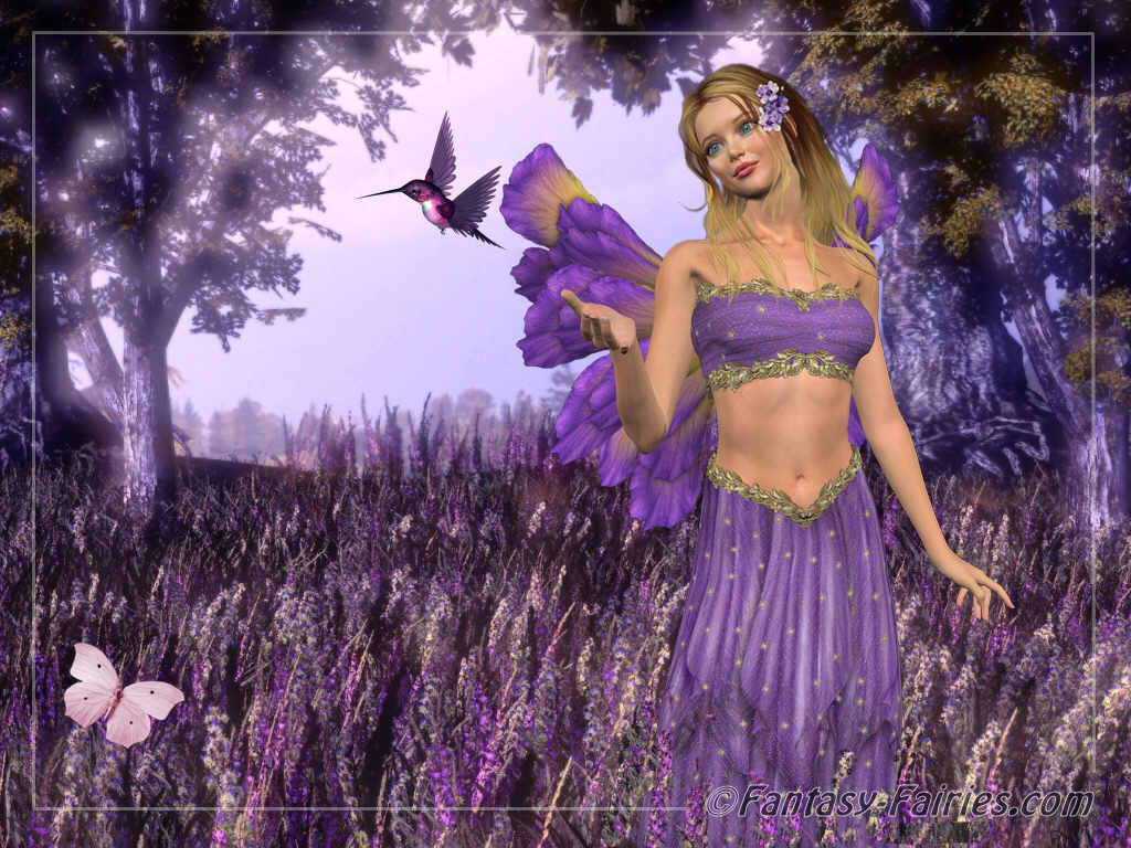 Lavendar Fairy Wallpaper   Fairies Wallpaper 6350130 1024x768