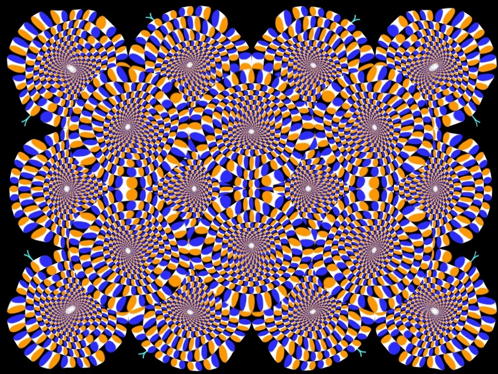 Optical Illusions Wallpaper 1600x1200