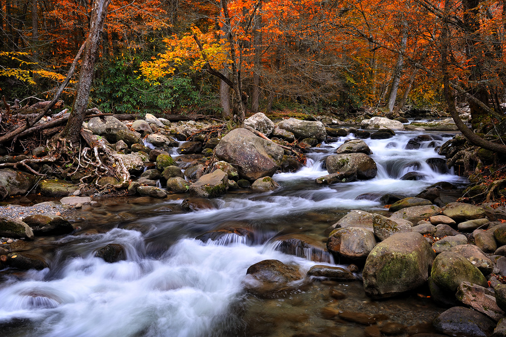 Smoky Mountain Fall Wallpaper Wallpapersafari