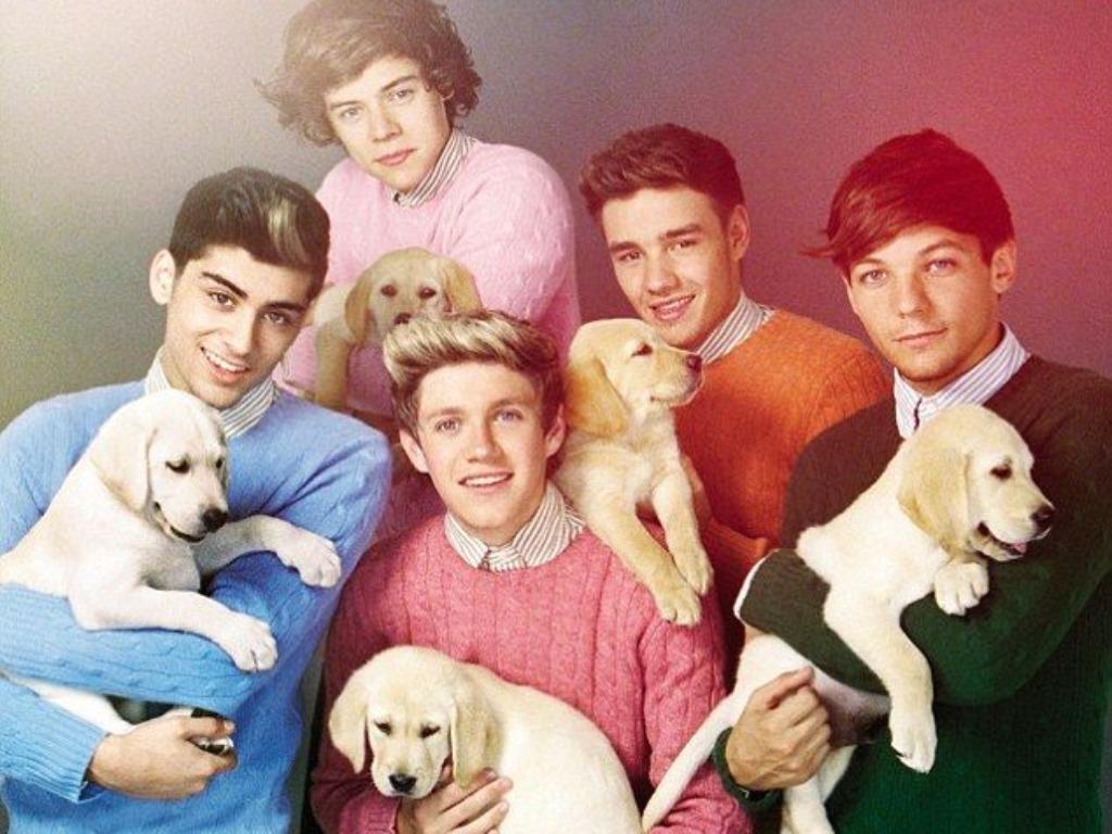 One Direction Wallpaper   One Direction Wallpaper 33081974 1024x768