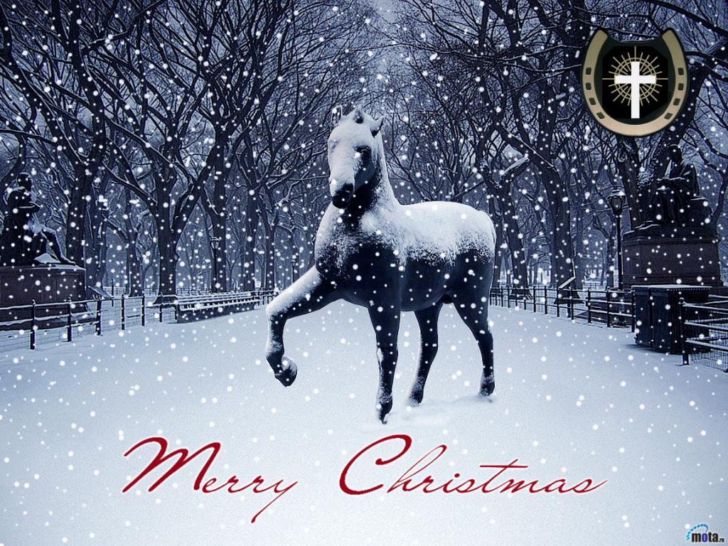 christmas sleigh horses 1920x1080 wallpaper - photo #27