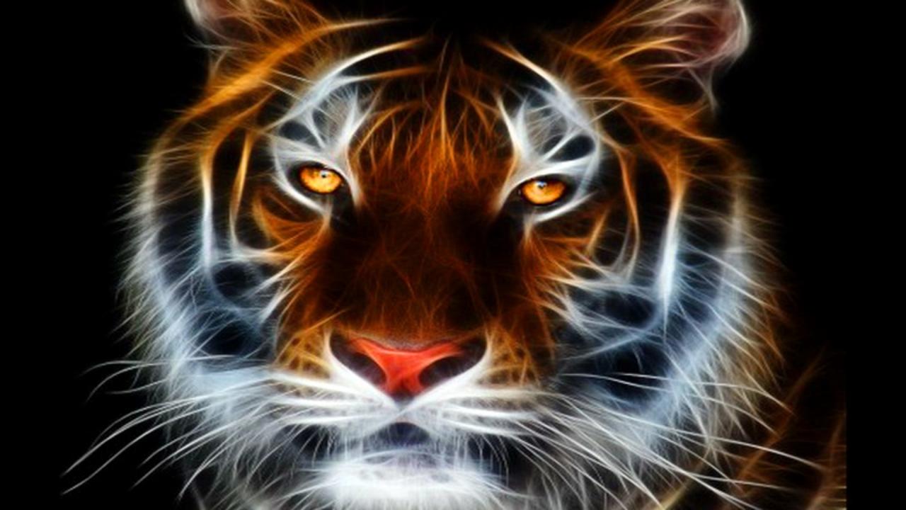 Abstract Tiger Wallpaper - WallpaperSafari