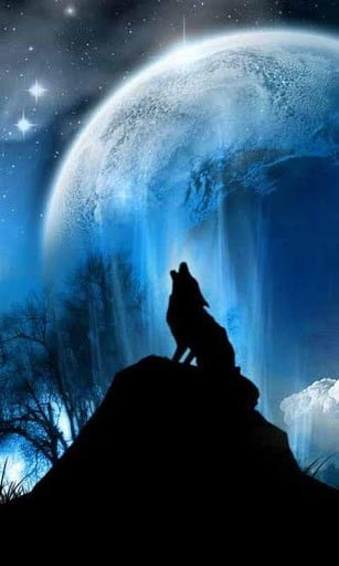 47 Blue Flame Wolf Live Wallpaper On Wallpapersafari