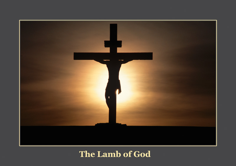 Beautiful frame of Jesus Christ on Cross Picture 800x563