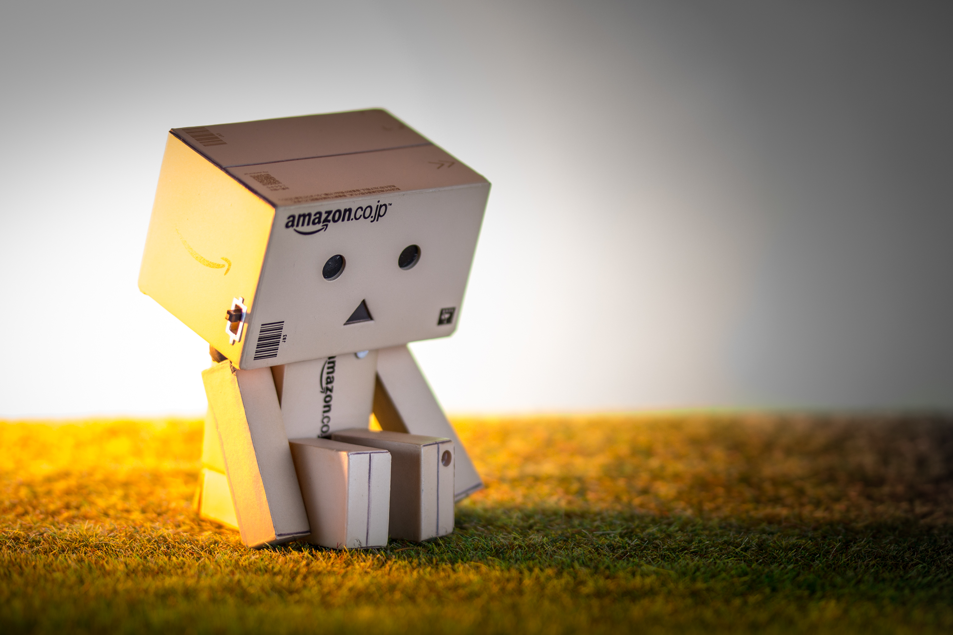 Danbo HD Wallpaper Background Image 3072x2048 ID735098 3072x2048