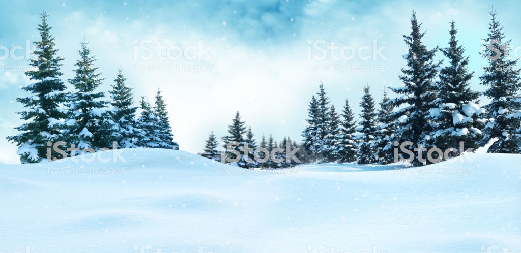 Beautiful Winter Landscape With Snow Covered Treeschristmas 1024x498