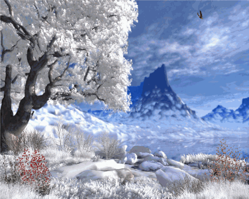 Winter Lake Animated Wallpaper This is the image displayed by 800x640