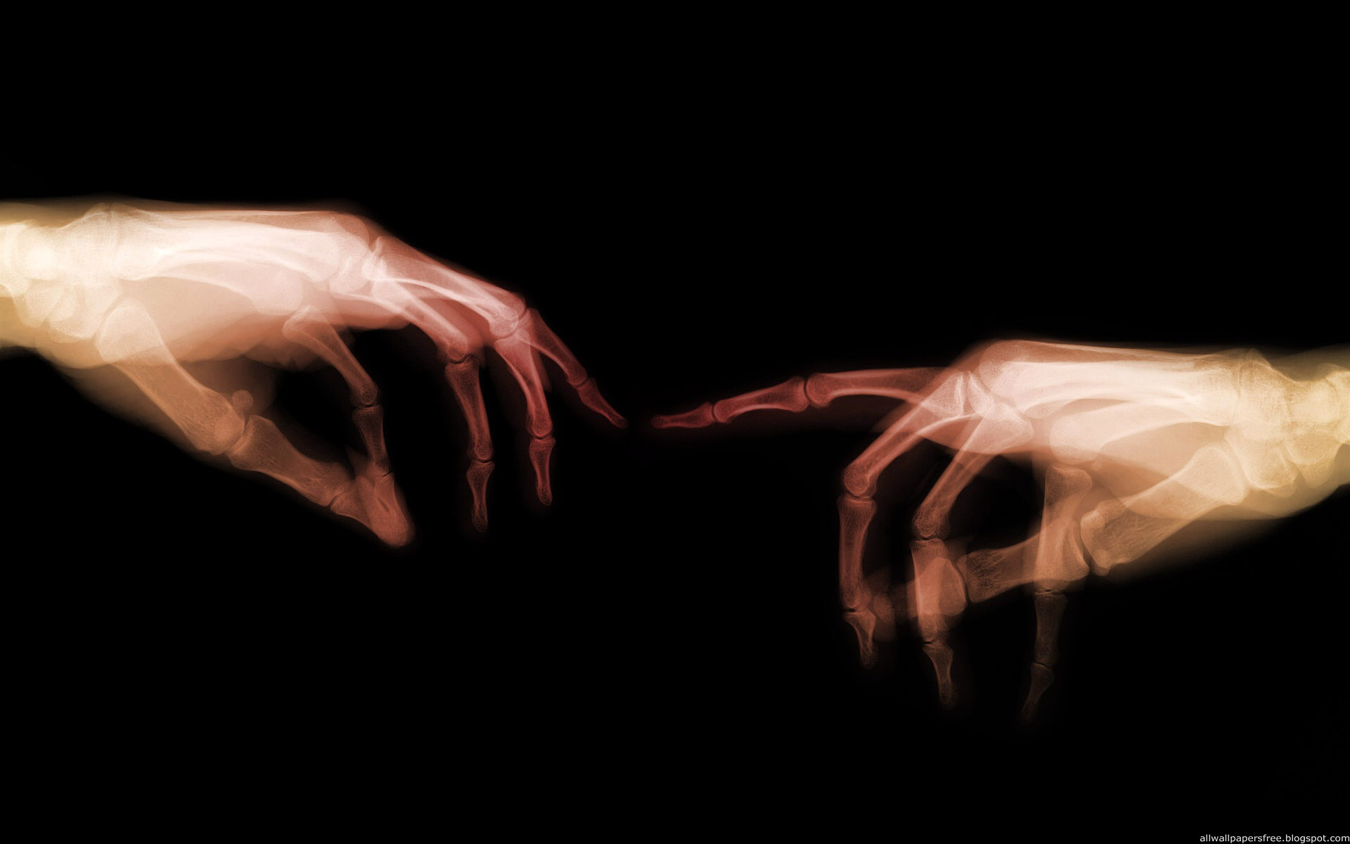 Ray Hands wallpapers X Ray Hands stock photos 1920x1200
