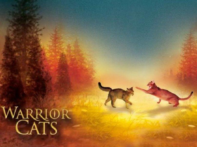warrior cats Wallpaper   ForWallpapercom 808x606