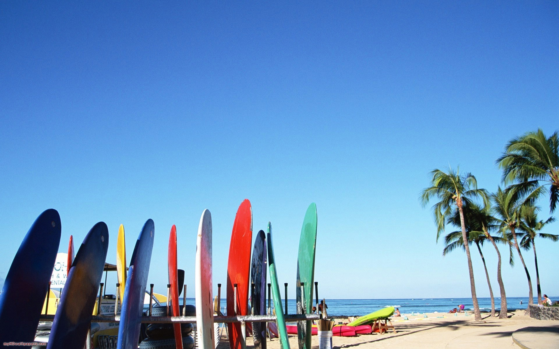 Beach surfboards palm trees wallpaper background