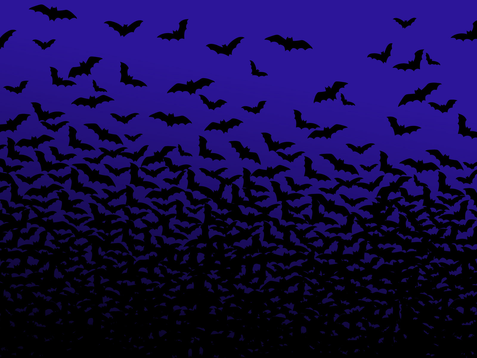 Bats Are Good   Halloween Wallpaper 526588 1600x1200