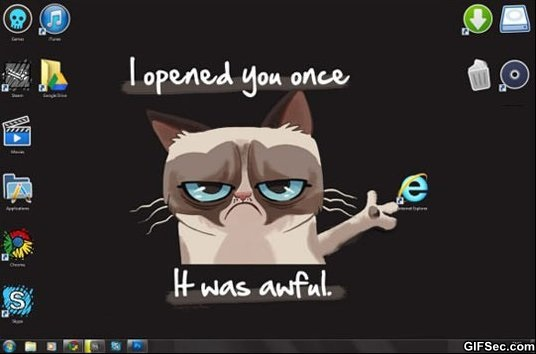 Funny Grumpy cat vs Internet Explorerjpg 536x354