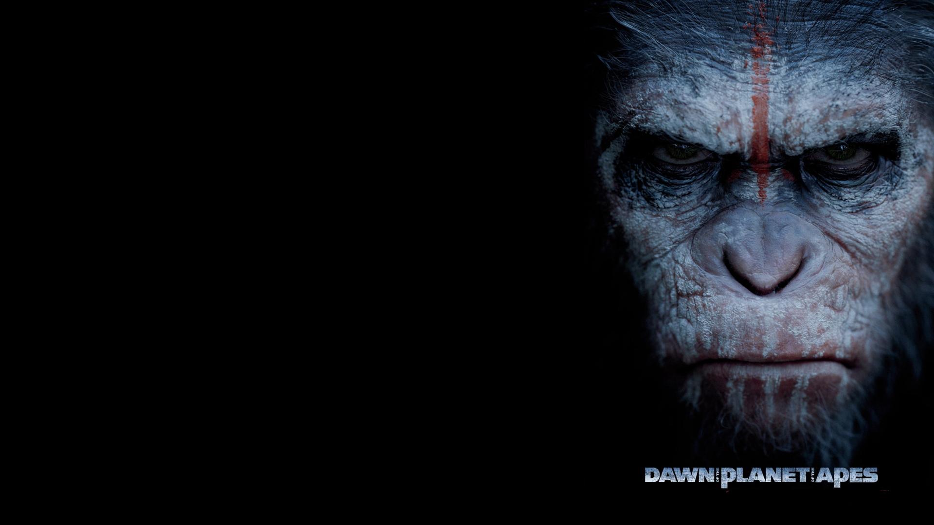 Планета обезьян война обои на рабочий стол