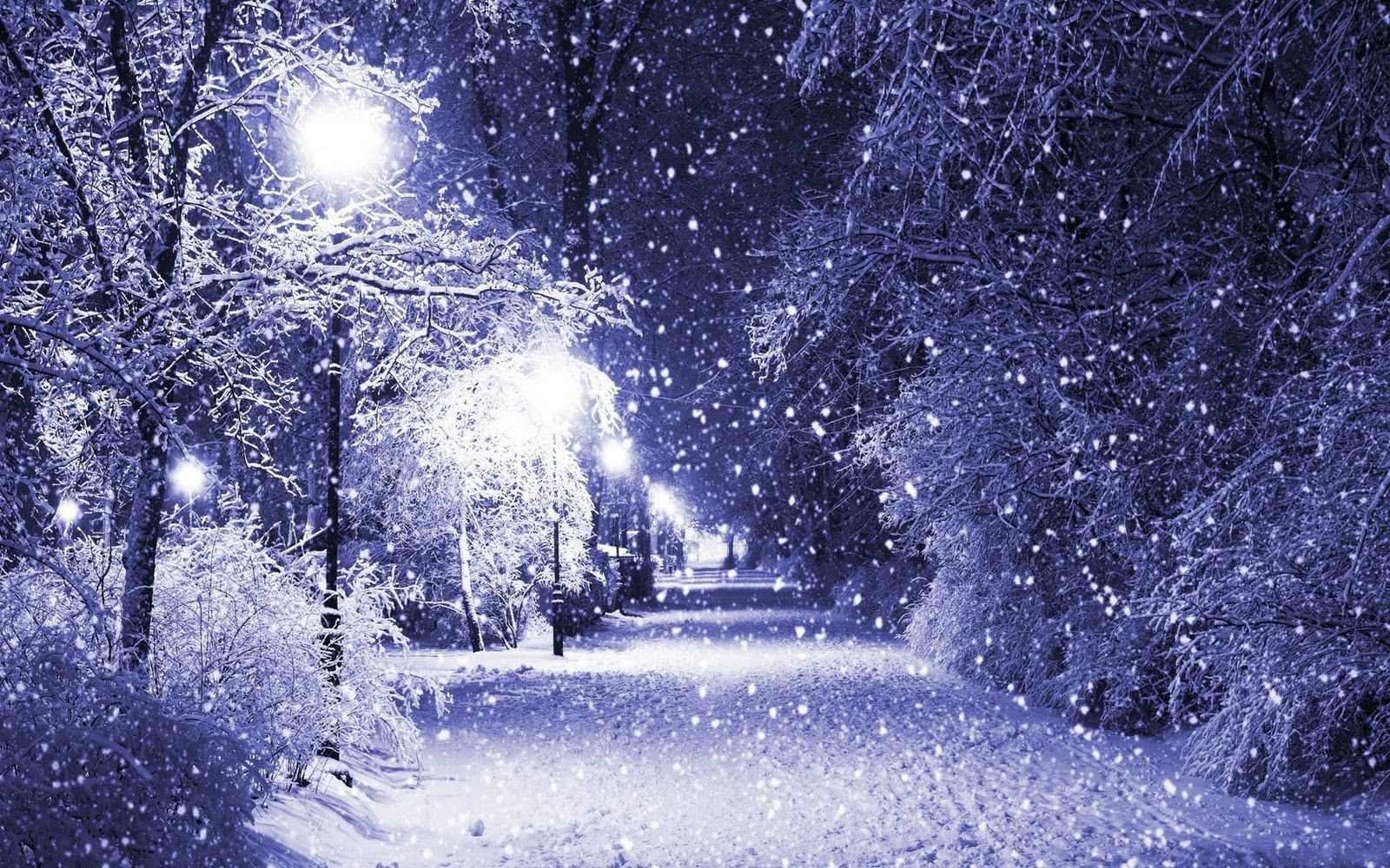 Calming noise of Winter on a Chilly Cold Wintry Evening 1600x1000