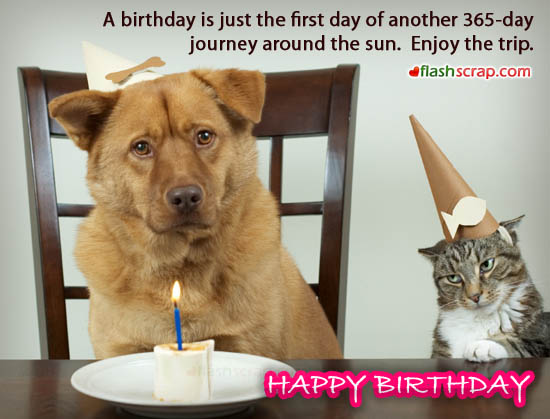 Funny Weird Birthday Wishes 16 Desktop Wallpaper   Funnypictureorg 550x419